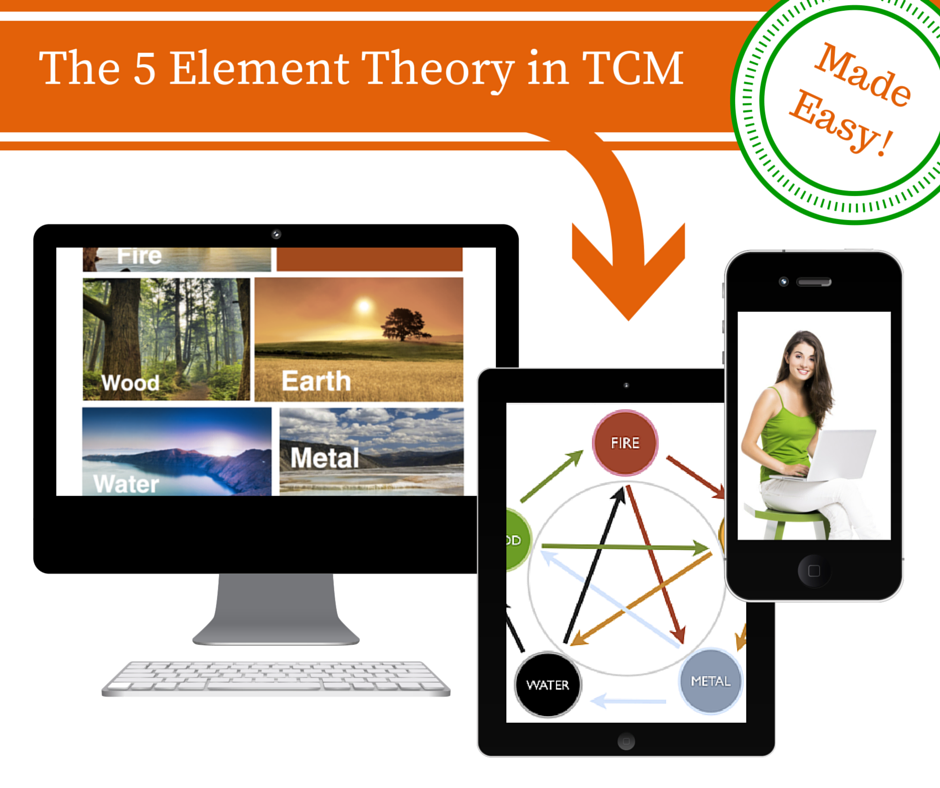 5 element theory course