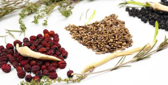 Chinese Herbal Formulae