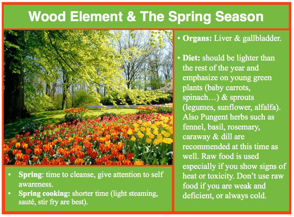 Spring season TCM Liver