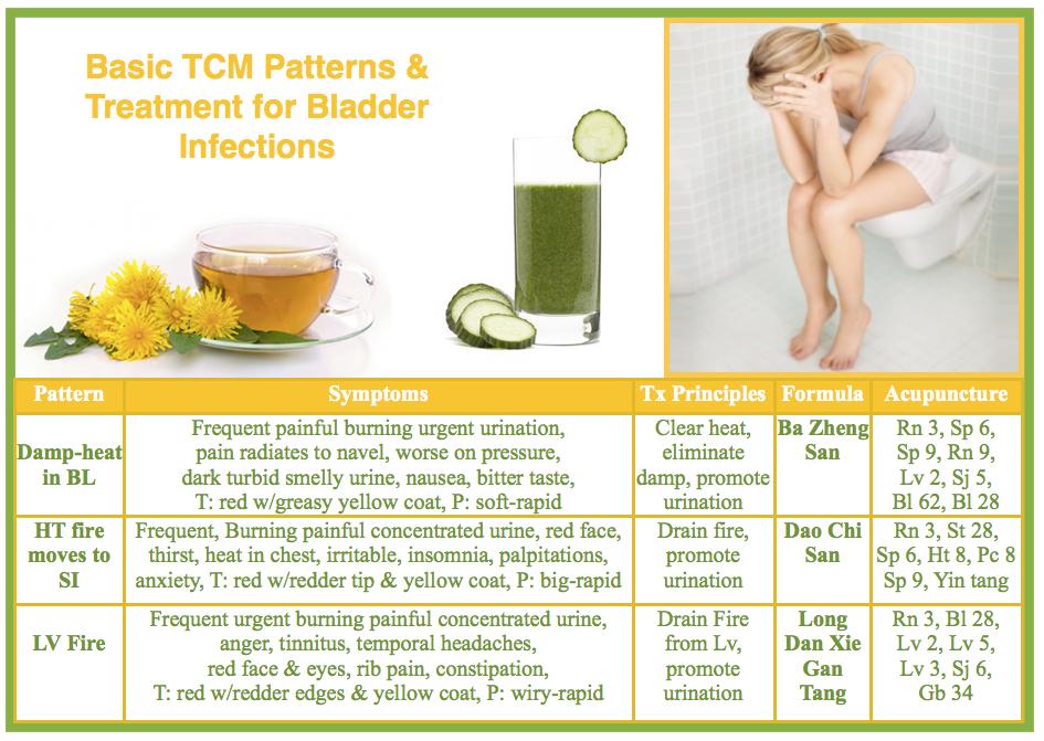 Bladder infection in TCM