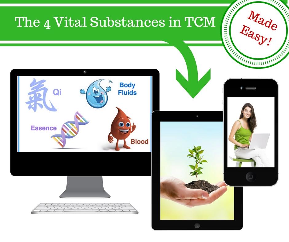 4 vital substances in TCM