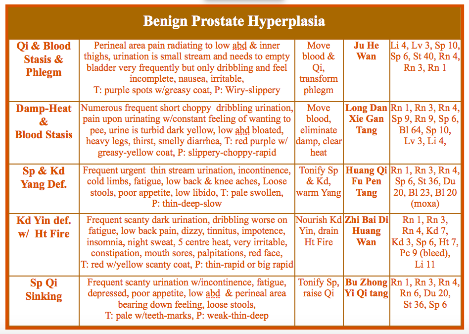 prostate-in-chinese-medicine