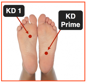 kd-prime-acupuncture-point