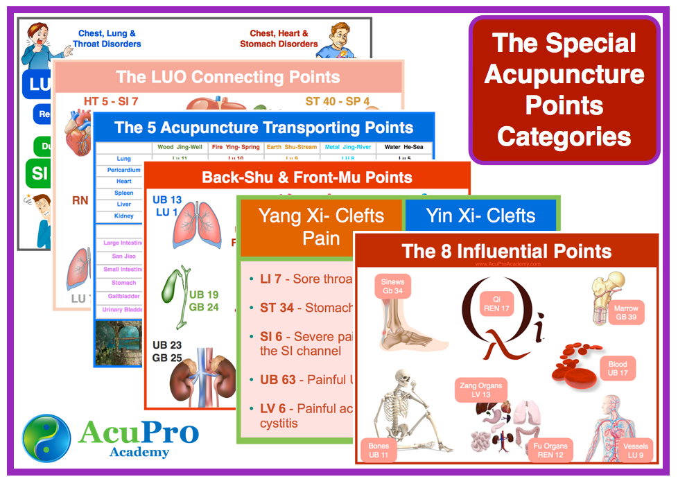The Most Used Acupuncture Points in Clinical practice